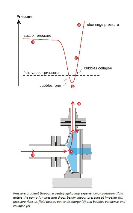 Pump Suction Pipe Design Considerations
