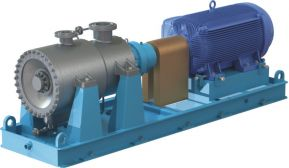 CN MAG-MS API - Sealless Pump